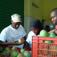 Kuemkwong Siemefo (right) and workers of the Buur Sine co-operative inspect the fruit