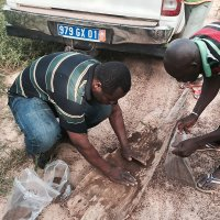 Messan Nditsi (links) collects soil samples for testing